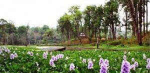 सुन्दर अनि मनोरम मोरङ लेटाङको राजारानी धार्मिक तथा पर्यटकीय क्षेत्र (भिडियो सहित )