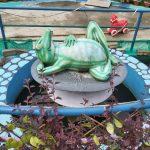 बेलबारीमा रहको ड्रिमल्याण्ड फन पार्क (तस्विरहरु)