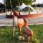 पर्यटक तान्दै सुन्दरहरैचास्थित मृगौलियाको नमुना पार्क